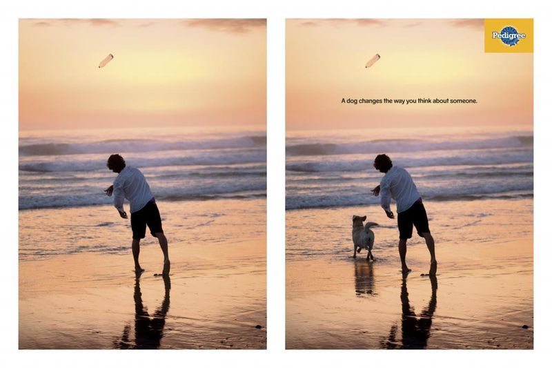 Perspective Shifting Pooch Ads Best Ads Print Advertising Ads