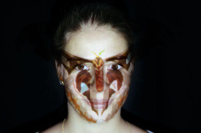 """Schmetterling Eine Onlineausstellung mit Foto- und Videomaterial. Das inhaltliche Thema ist """"Projektion"""" aus der Psychologie"""
