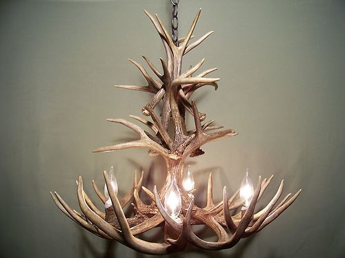 Whitetail Deer 17 Antler Chandelier Real Shed Antlers Handmade Elk Sockets  Lamp | eBay