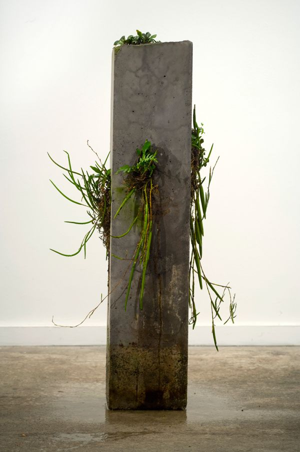 Jamie North | The Path of Least Resistance, 2009