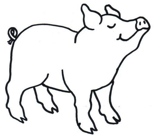 Dibujo De Cerdo Para Colorear Dibujos Infantiles De Cerdo Colorear Cerdos Cerdo Para Colorear Cerdo Dibujo Cerdos