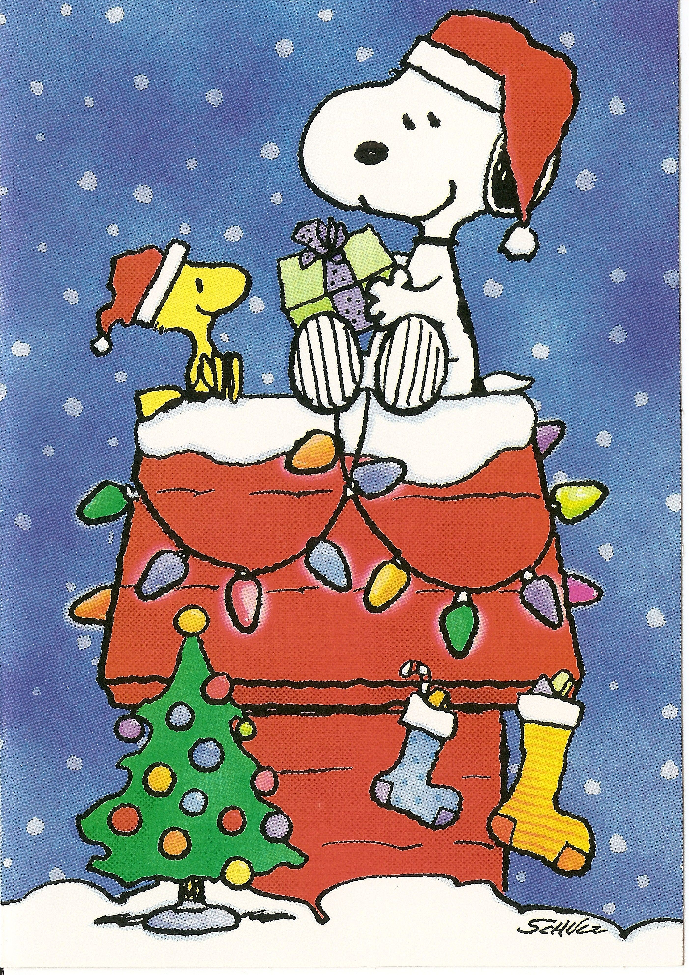 Snoopy | Christmas Cards | Pinterest | Snoopy, Snoopy christmas and ...