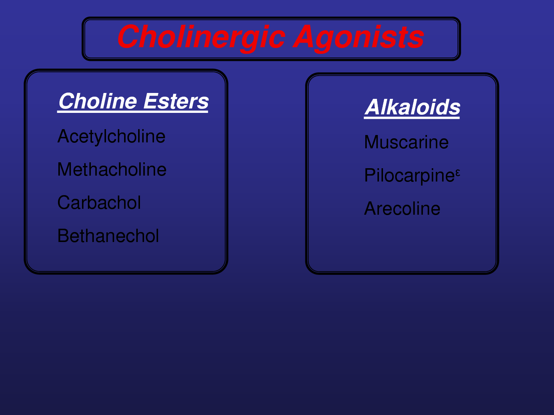 cholinergic drugs - Google Search | Nursing study tools | Pinterest