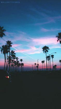 1bbf46de6349a5176cd0ddd06834158f--palm-tree-background-iphone-background-iphone-tumblr.jpg (236×418)