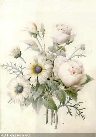 Jet e de fleurs aquarelle attribu pierre joseph for Botanic fleurs artificielles
