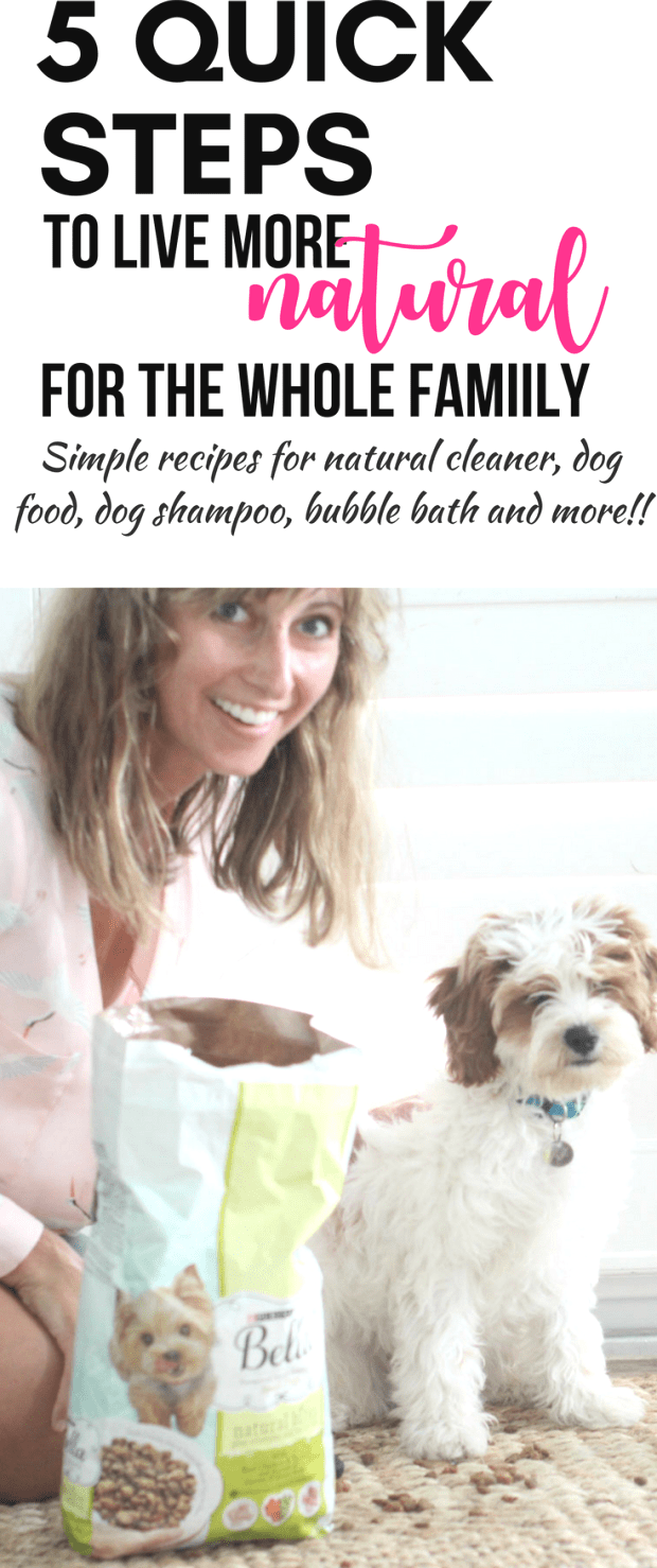 Homemade cleaners natural dog shampoo and more These ideas are super affordable and simple to slowly
