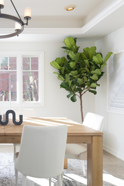 6026 Acacia Ave Oakland California   #Modern #wood #organic #neutral #diningroom     #Homestaging #interiordesign #designinspo #bayarearealestate #carealestate #realestate #luxuryhome #luxury #luxuryrealestate #stagedbystudioD