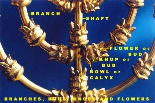 Parts Of The Tabernacle Lamp Stand Spiritual