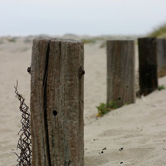 Old Fence Poles Art For Your Wall Pinterest Fences