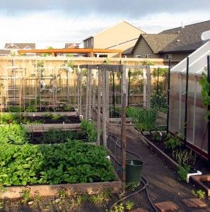 7c0bd688179ca29af9acb892da7c820b - Vegetable Gardening In The Desert Southwest
