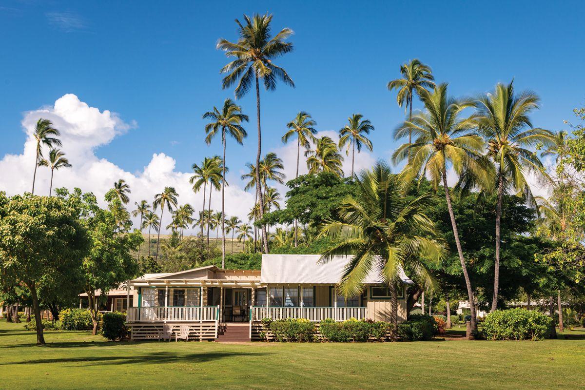10 Things Not To Do in Hawaiʻi Waimea, Kona beaches