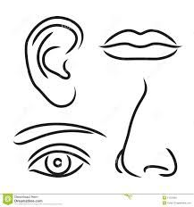 Image Result For Mouth Clipart Black And White Ear Picture Mouth Clipart Nose