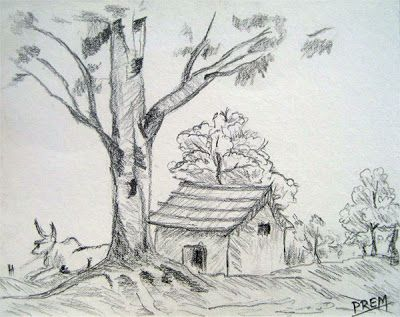 Good Landscape And The Surrounding Trees Make The House Artistic And Real