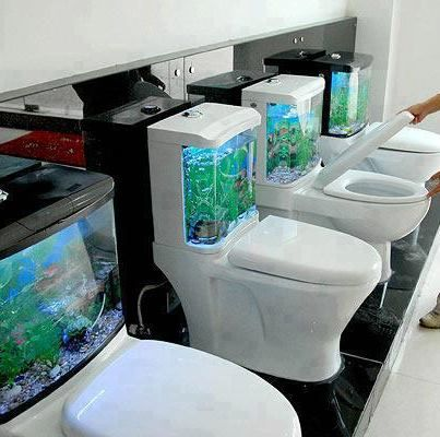 Fish Bowl Toilet Anyone Gadgets I Love Pinterest