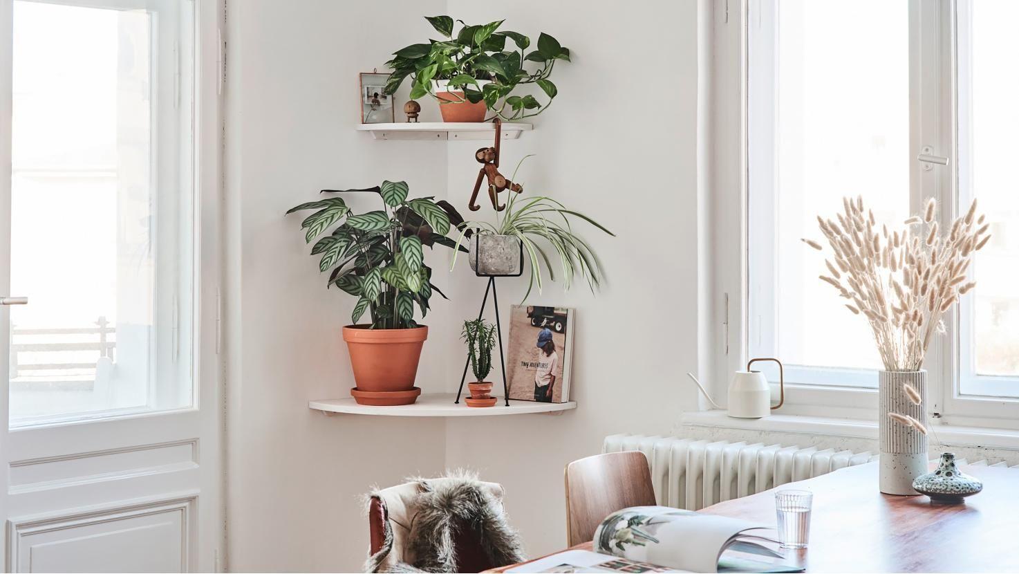 So Werden Auch Tote Ecken Im Wohnzimmer Sinnvoll Genutzt Mit Einem Selbstgebauten Eckregal Aus Holz In 2020 Eckregal Bessere Zuhause Und Garten Wohnzimmer Ecken