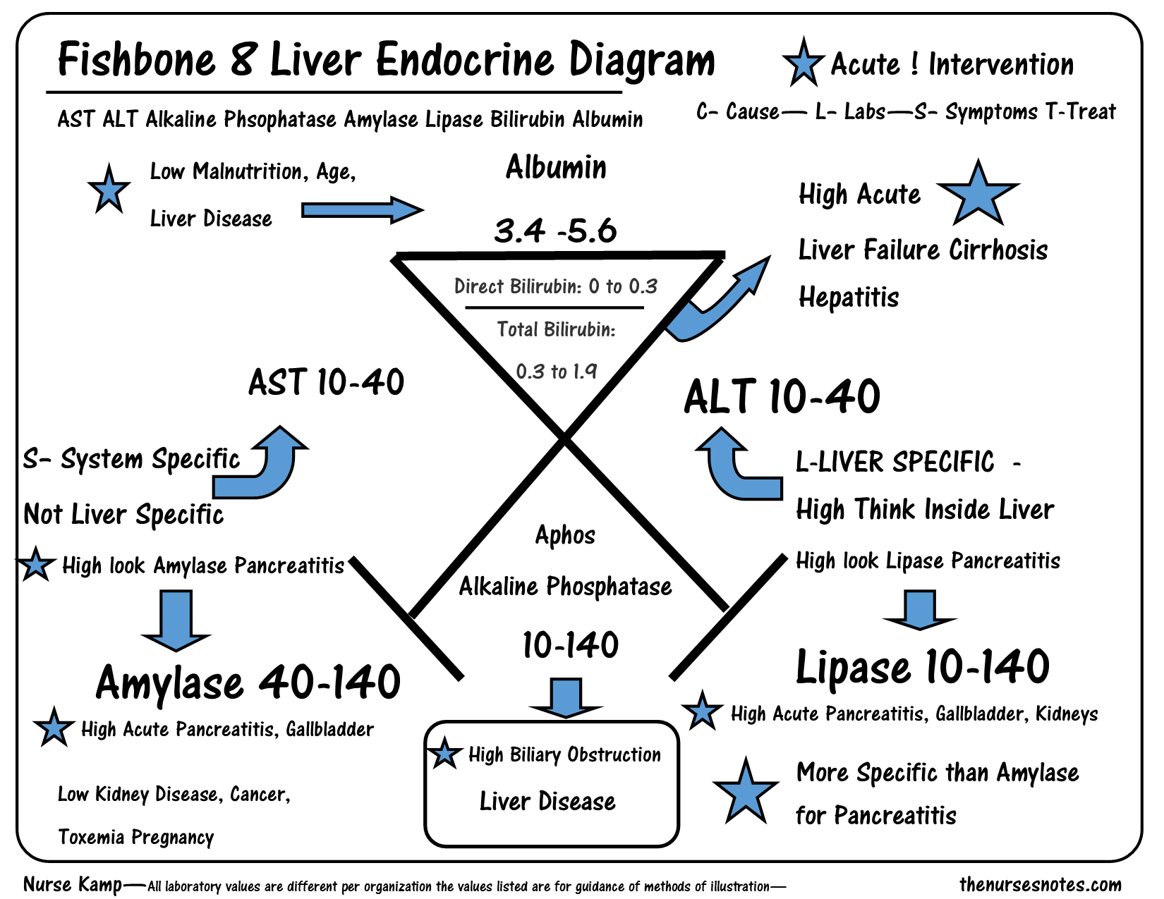 Medical Fishbone Diagram Lab Values | www.galleryhip.com - The Hippest ...