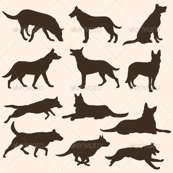 Vector Set Of Dogs Silhouettes Animals Characters