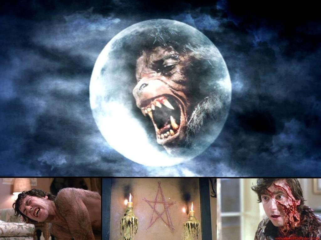 American Werewolf In London American Werewolf In London