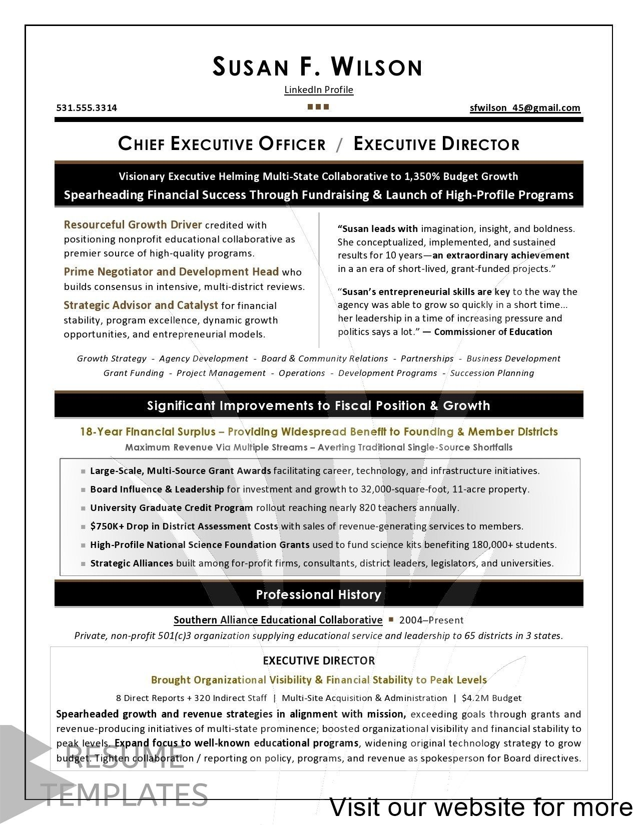 12 Creative Visionary Designers Executive Resume Resume Writing Services Professional Resume Writers