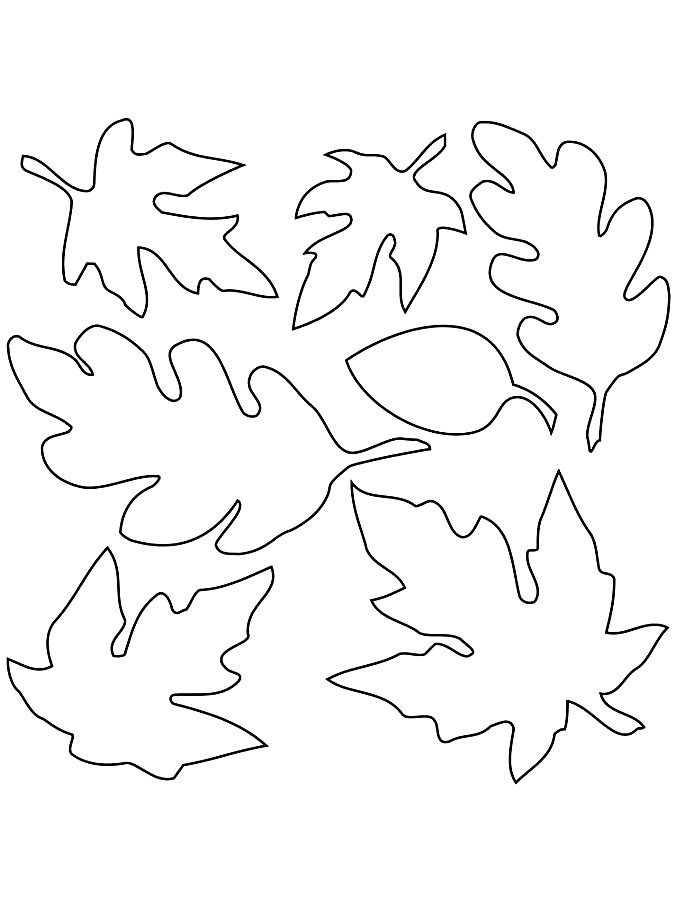 Распечатать Раскраска листья деревьев. Распечатать картинки деревьев ...