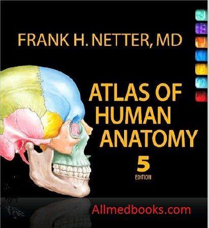 Downloadbuy Netter Atlas Of Human Anatomy Pdf All Medical Books