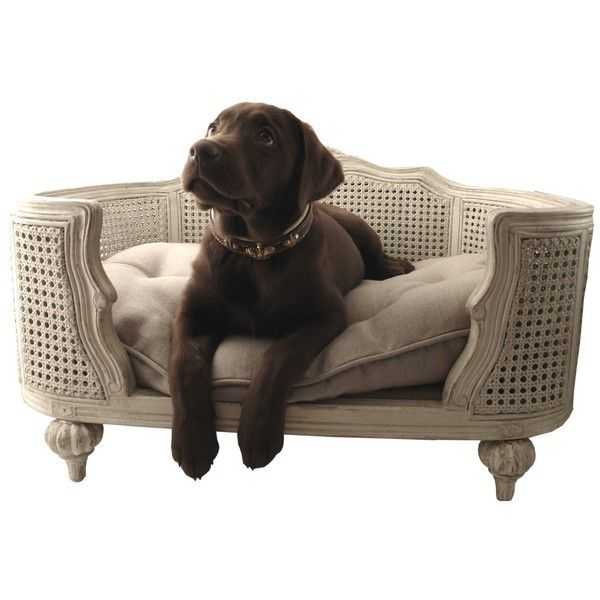 rigolo de la d co pour nos animaux panier chien. Black Bedroom Furniture Sets. Home Design Ideas