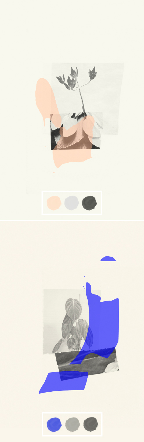 Rosemarie Auberson: colour