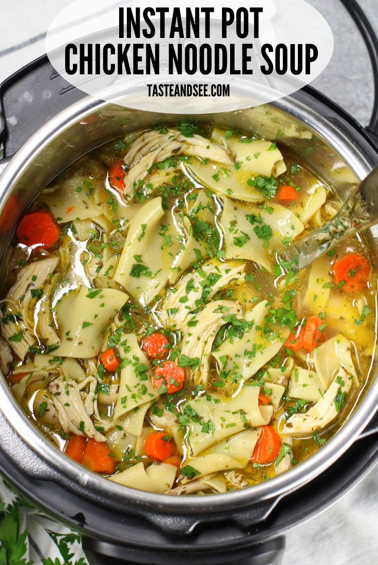 this is the best chicken noodle soup ever instant pot