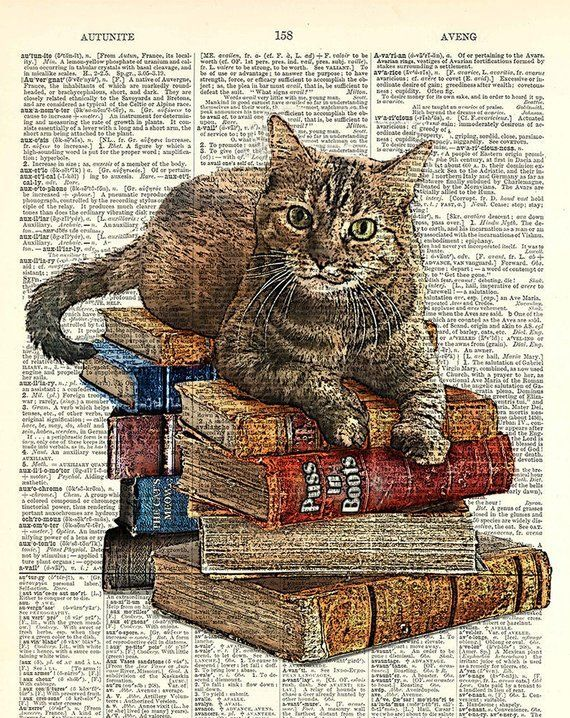 Photo of Gato en la pila de libros. Kitty Classics Print parece un dibujo a tinta con color. Ar …