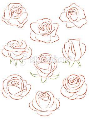 Set Of Roses Vector Illustration Drawing Kresby Umeni Obrazky