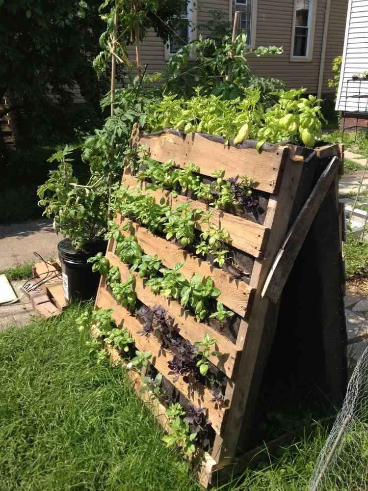 Vertikaler Garten Für Gewürzen Und Kleine Pflanzen | Garten ... Vertikale Bepflanzung Ideen Tipps Garten