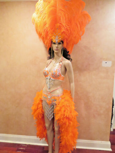 Pin by Sarah Yellin on AOTD SHOWGIRL Rio carnival
