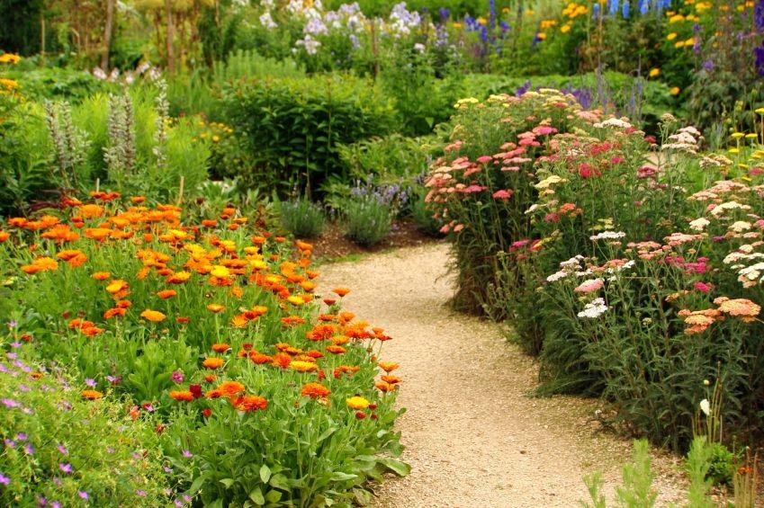 Jeden Sommer ein neuer Garten Sommer, Neuer und Gärten - bauerngarten anlegen welche pflanzen