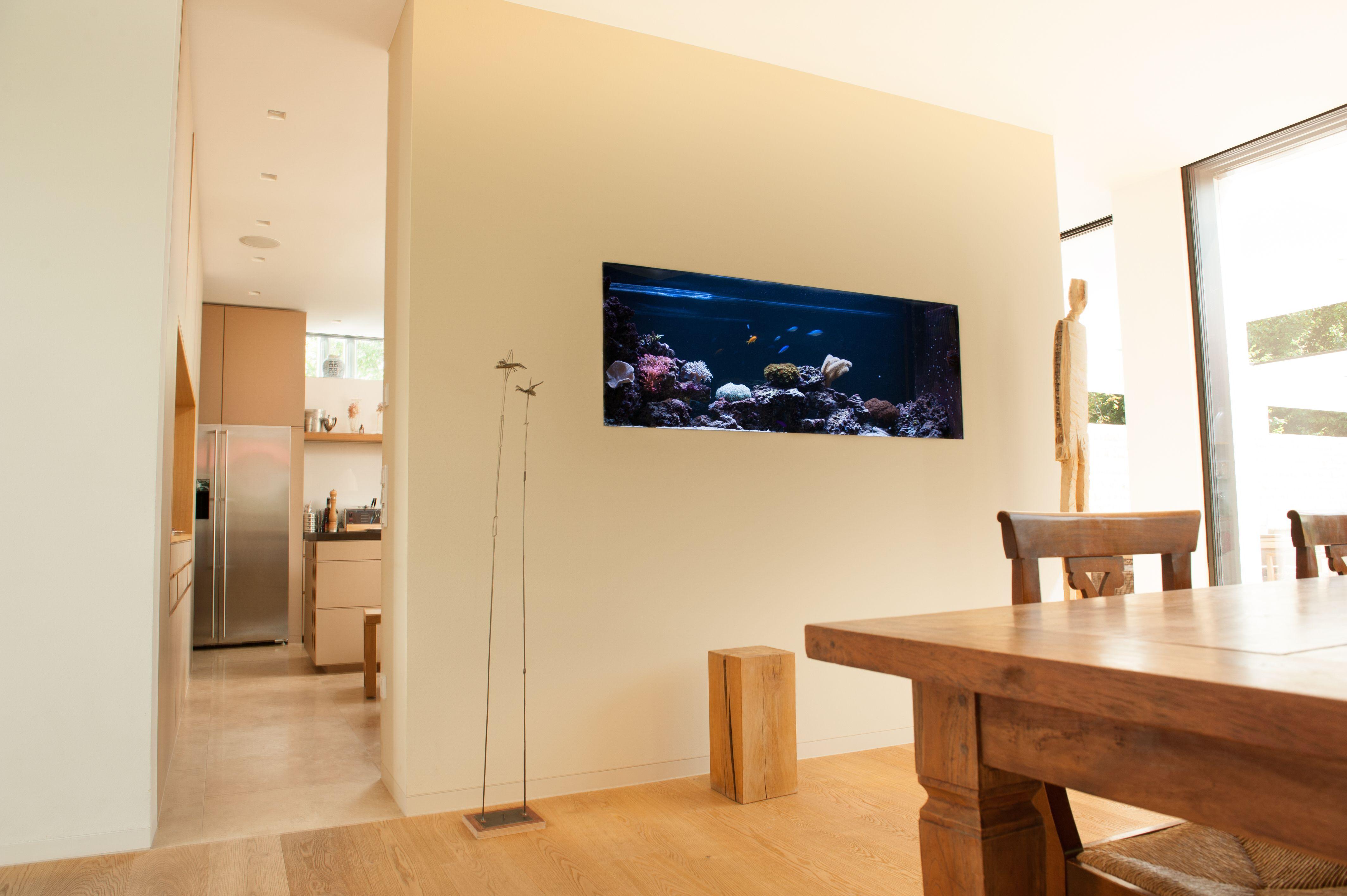 meerwasseraquarium als raumteiler zwischen k che und. Black Bedroom Furniture Sets. Home Design Ideas