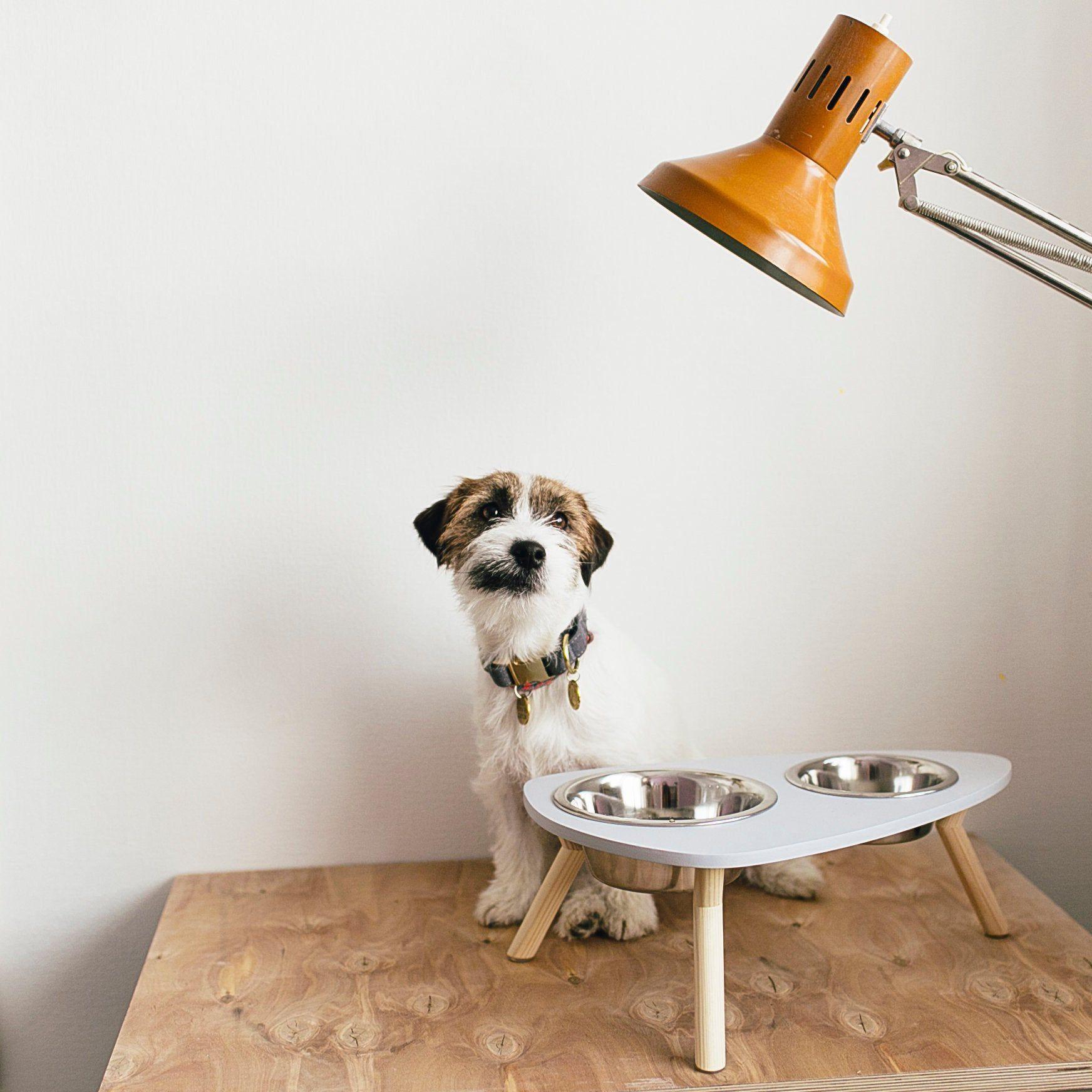 Raised Dog Bowl Mid Century Style Dog feeder Christmas Dog