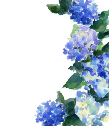 Blue Flower Border With Images Watercolor Hydrangea