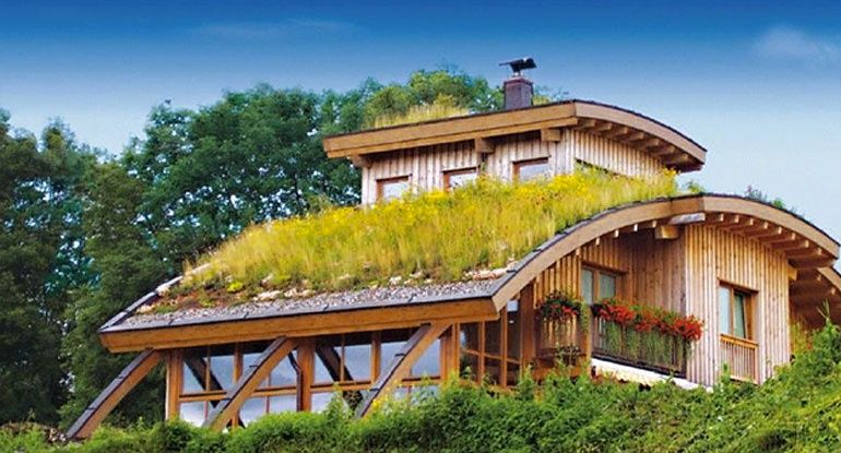 Not For The Rooftop Grass, But Just The Whole Curved Roof