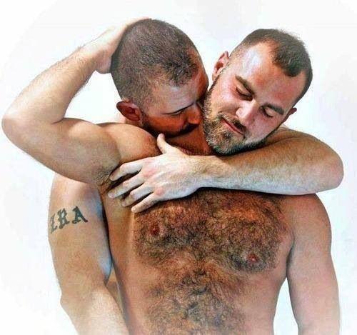Peludos Gay Bear