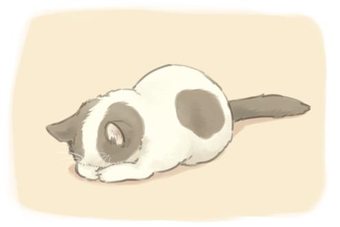 Cuuuuute Dibujos De Gatos Ilustraciones De Gato Dibujos De Animales