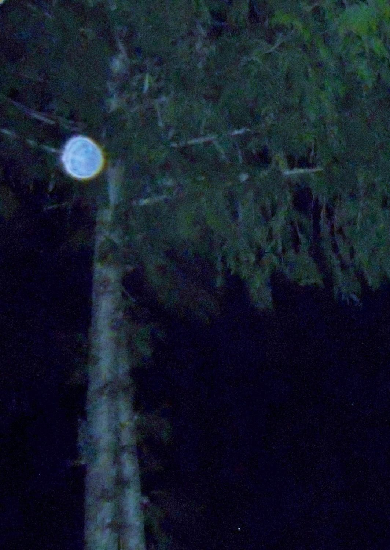 Mystical world of spirit orb photography | moon2moon | Ghost