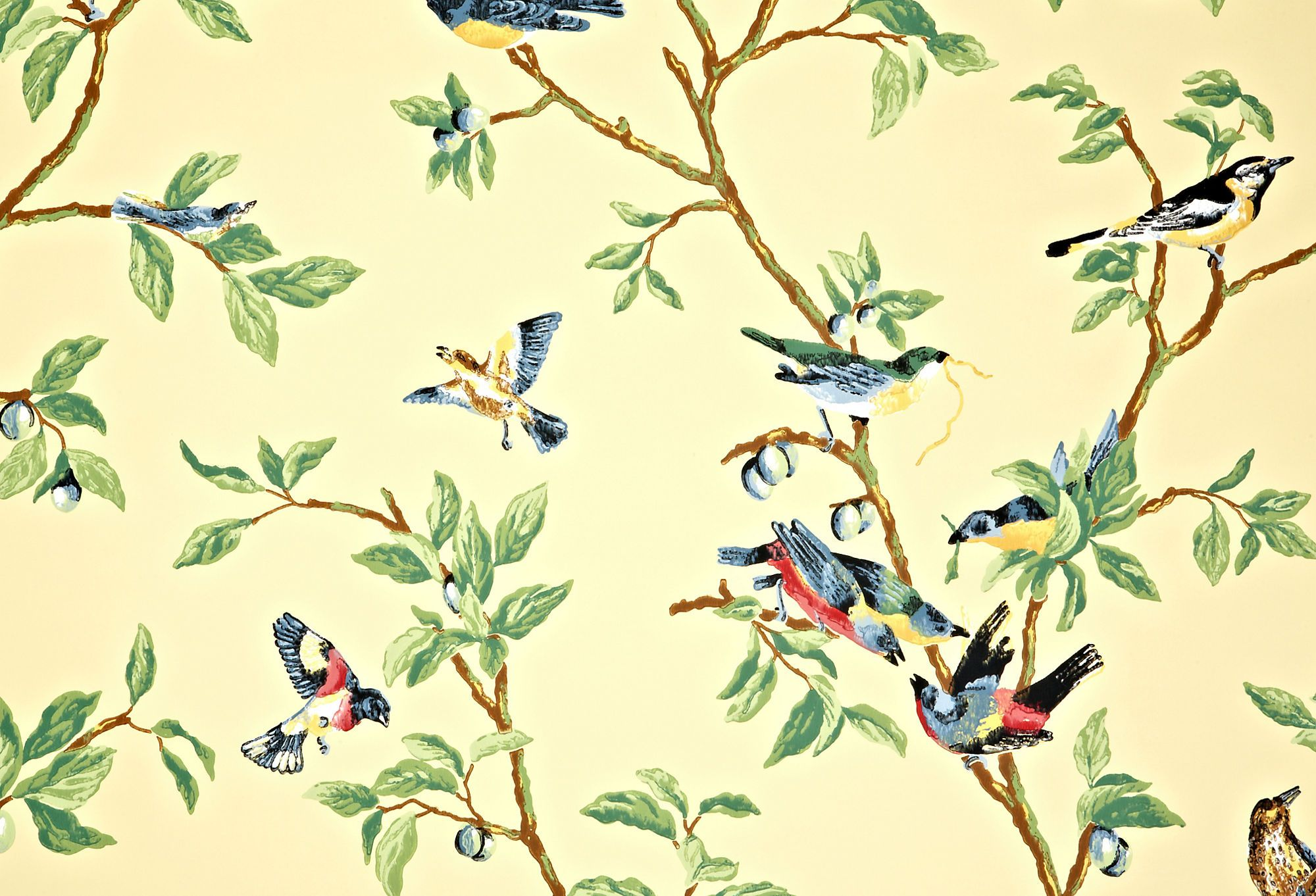 Thibaut, Little Bird White wallpaper, Bird wallpaper