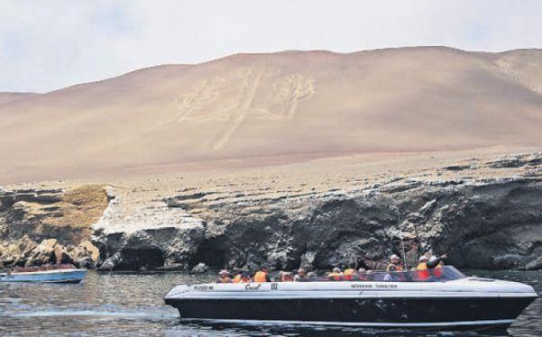 Paracas: vientos de vida en el litoral sur