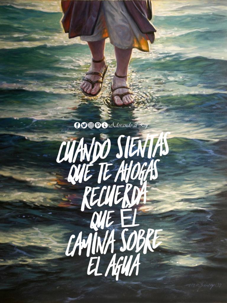 él Camina Sobre El Agua Frases Dios Confianza En Dios Y Dios