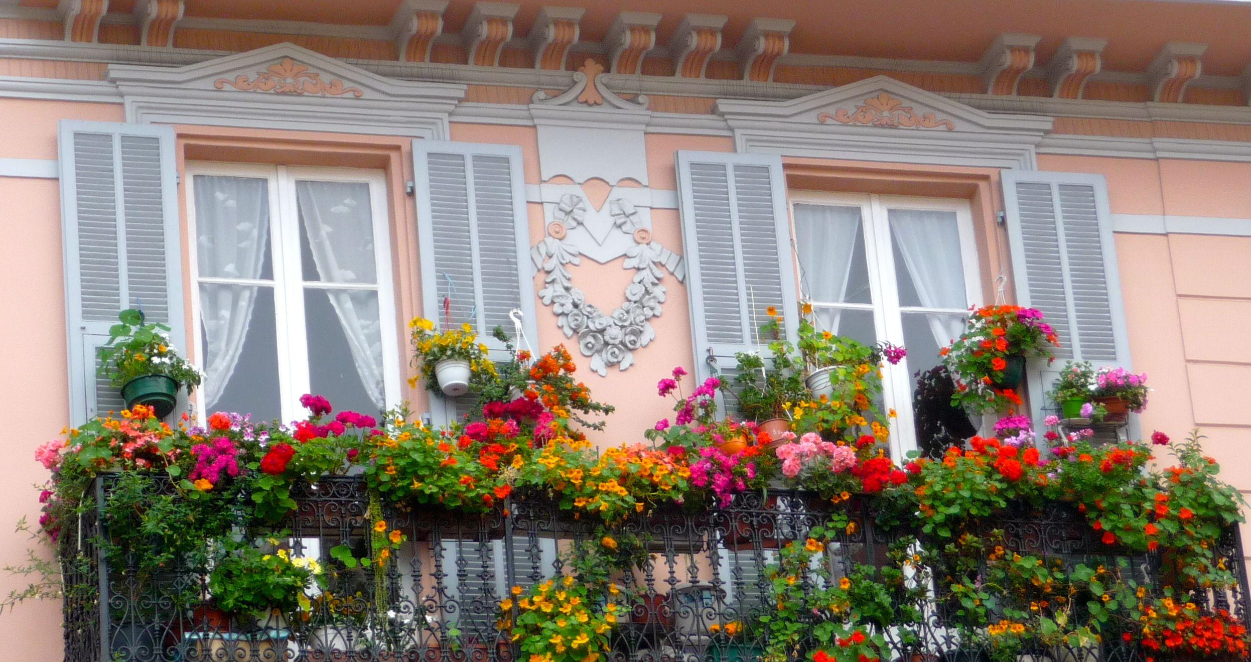 window garden in Monaco
