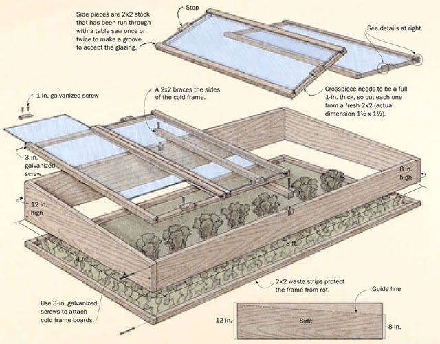 Choosing A Cold Frame That Works for You & 5 Plants That Defy the ...