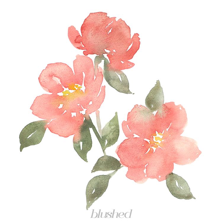Pin de Jasmine Pomierski en Calligraphy/Card Stuff   Pinterest