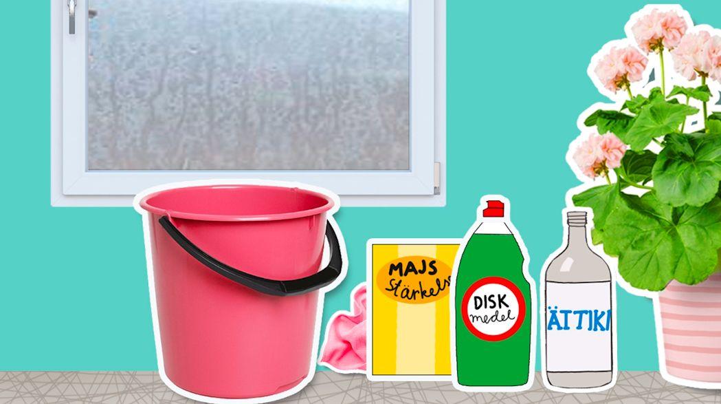 blanda egen fönsterputs