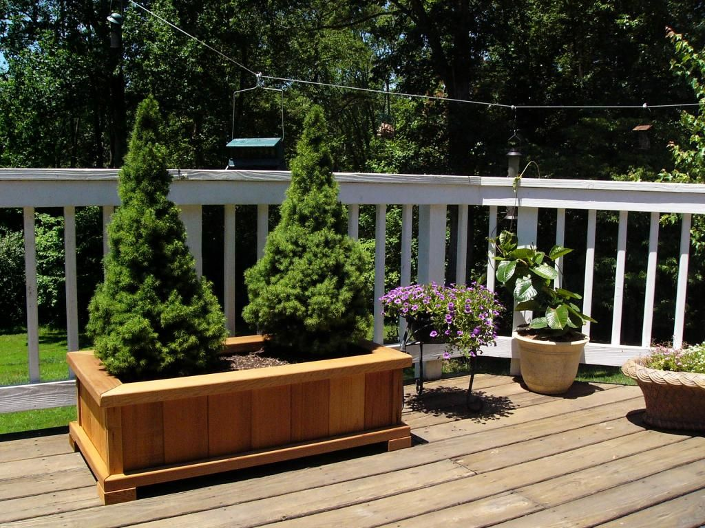 Wooden Garden Planters, Flower, Plants