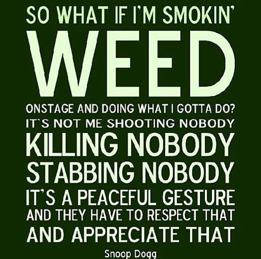 Stoner Friendship Quotes: Snoop Dogg Weed Smoking Quote