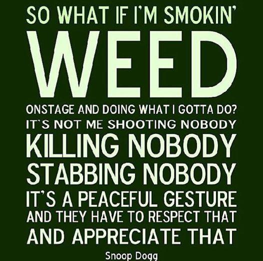 smoking bongs quotes